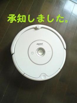 P1070965.jpg
