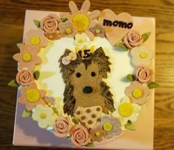 cake1_20090217165136.jpg