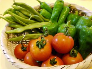 山盛り無農薬野菜たち