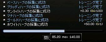 03257.jpg
