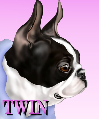 ティン-2