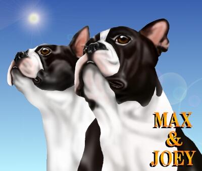 MAX&JOEY10-6