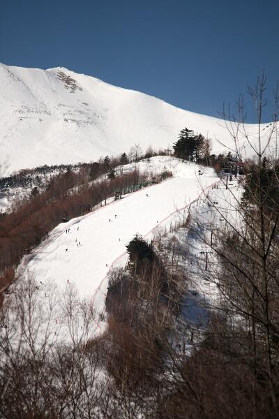 スキーヤー、ちっちゃ!