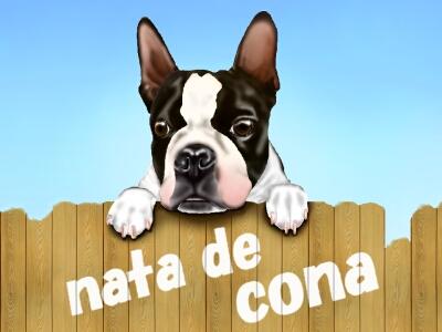CONA-2.jpg