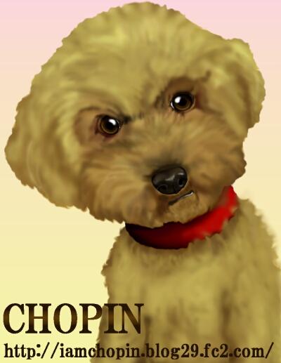 Cyopin-7.jpg