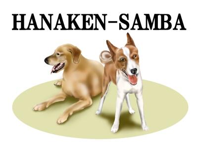 HANAKEN-SAMBA-1.jpg