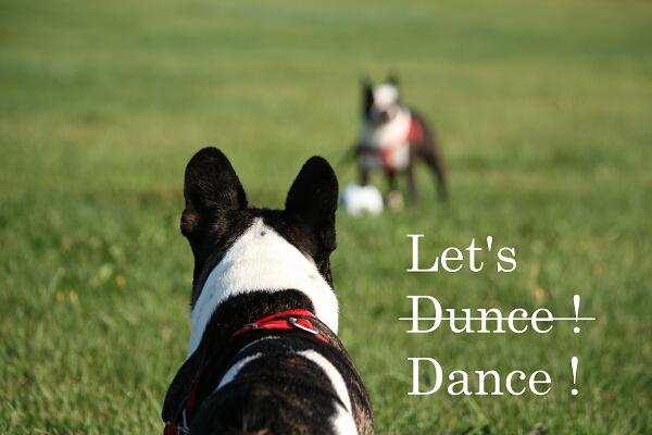 さぁ!踊りましょうか!