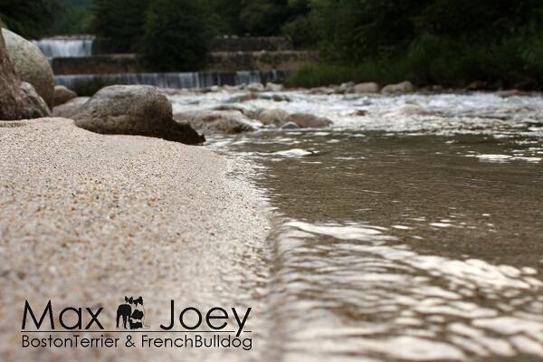 綺麗な川です