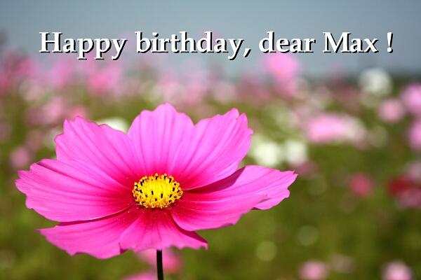 マックス!誕生日おめでとう!真心込めて!