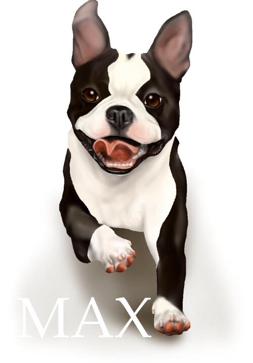 MAX100.jpg