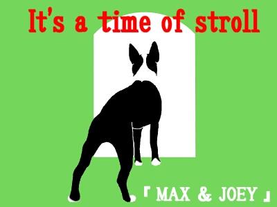 MAX29.jpg