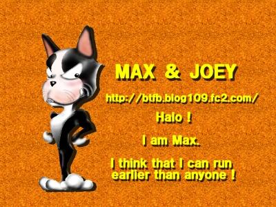 MAX32.jpg
