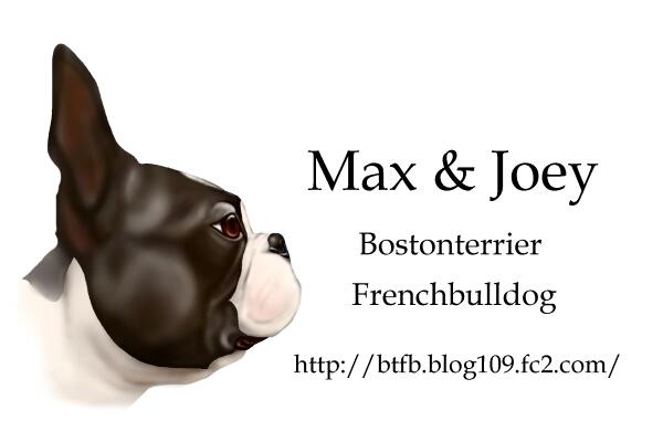 MAX96.jpg