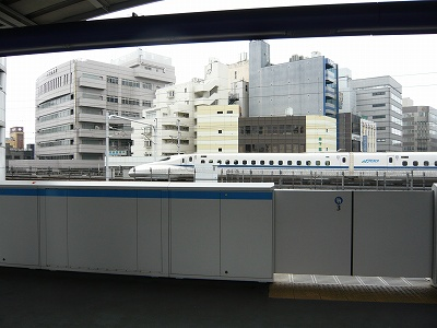 P1020936.jpg