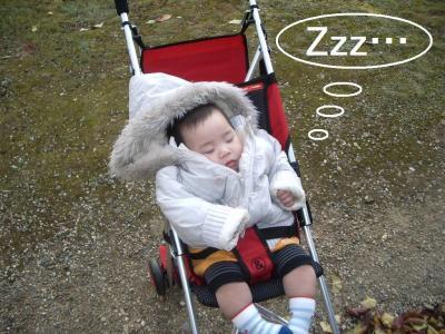 1123奈良公園うな1