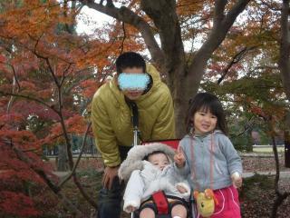 1123奈良公園紅葉