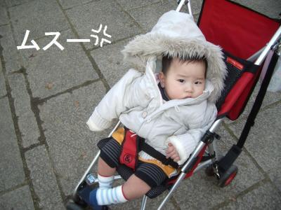 1123奈良公園うな2