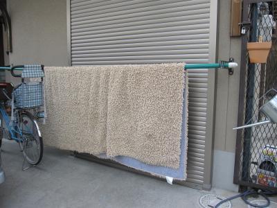 0616ラグお洗濯