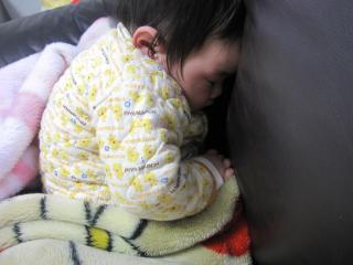 0309お昼寝うなちゃん