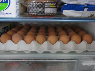 0404卵40個