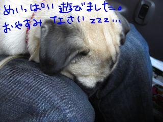 20090223v.jpg