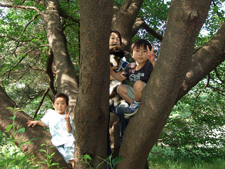 闘犬士!?(2008/6/1)
