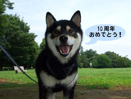 創業10周年(2008/7/5)