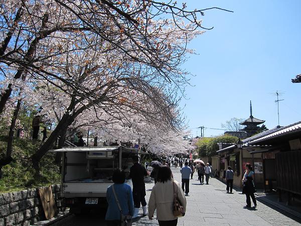 Canon キャノン IXY DIGITAL 510IS 実写 試写 オート ねねの道 桜