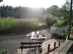 Tea Room010-2