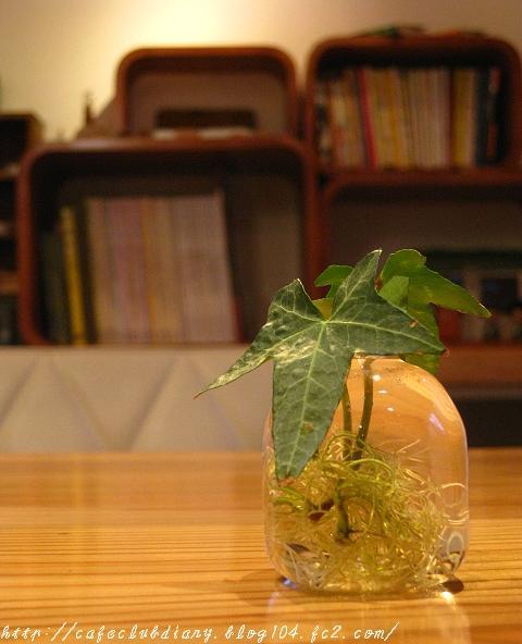 Fika Cafe001