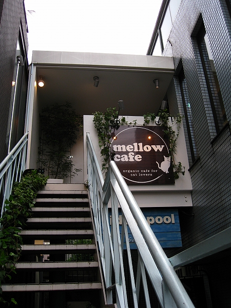 mellow cafe024