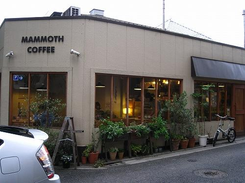MAMMOTH COFFEE007