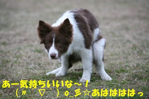 IMG_1244-1.jpg