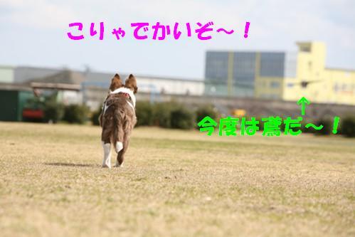 IMG_1279-1.jpg
