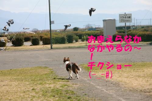 IMG_1298-1.jpg