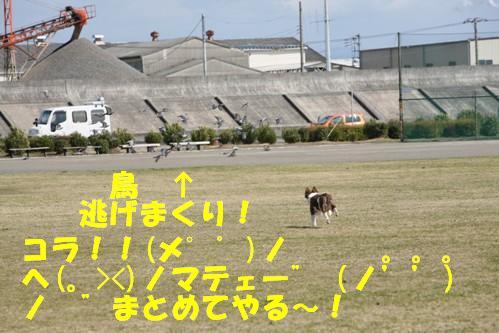 IMG_1300-1.jpg