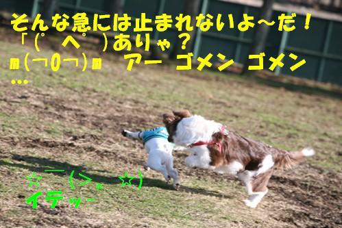 IMG_1347-1.jpg