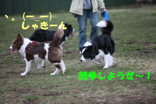 IMG_1451-2.jpg