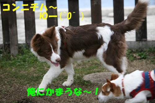 IMG_15198.jpg