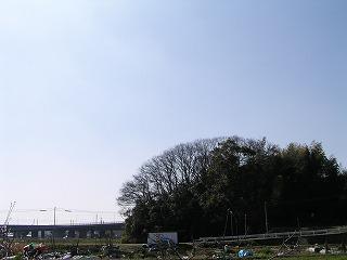 P3150080.jpg