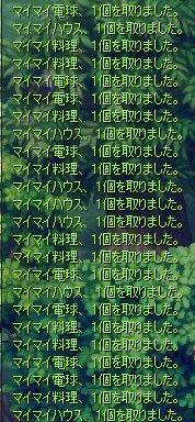 081206-05.jpg