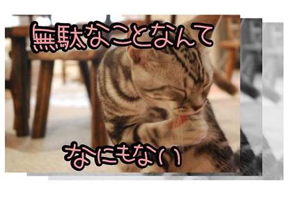 14ss_20090825201900.jpg