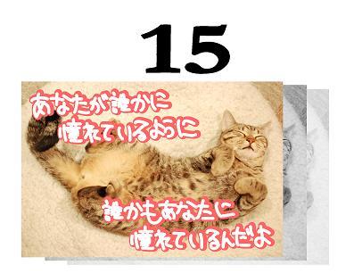 15s.jpg
