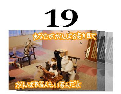 19s_20090720111742.jpg