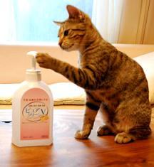 手洗い2s