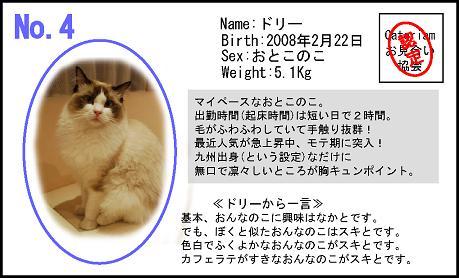 のコピーS