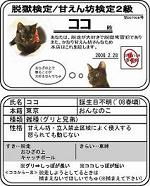 ●ココ検定2s