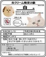 ●白検定s