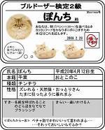●ぽんち検定s