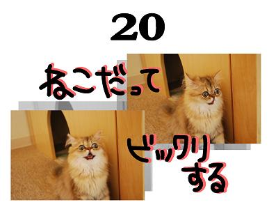 20s_20090620120527.jpg